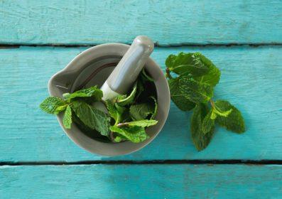 Fogápolás gyógynövényekkel
